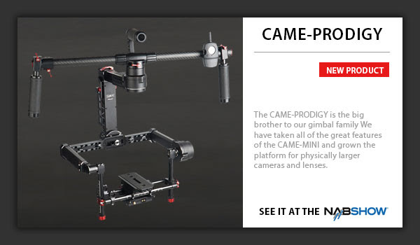 CAME-Prodigy