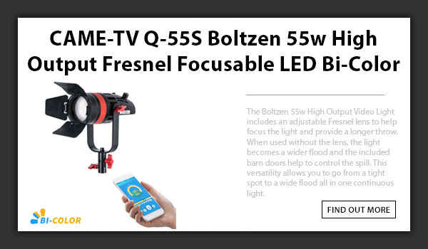 Q-55s Boltzen LED Light